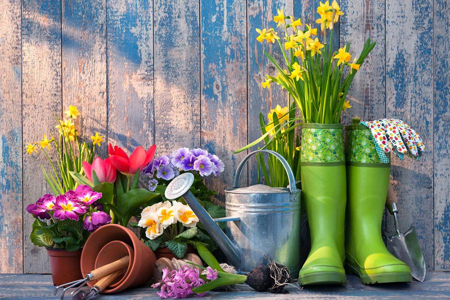 Gardening this spring